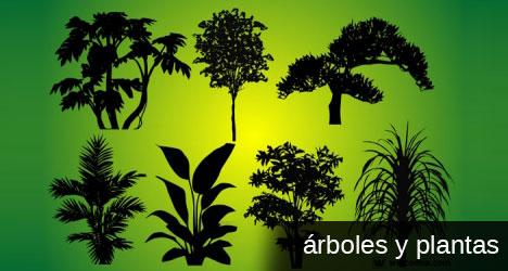 Plantilla de vectores con árboles para medio ambiente
